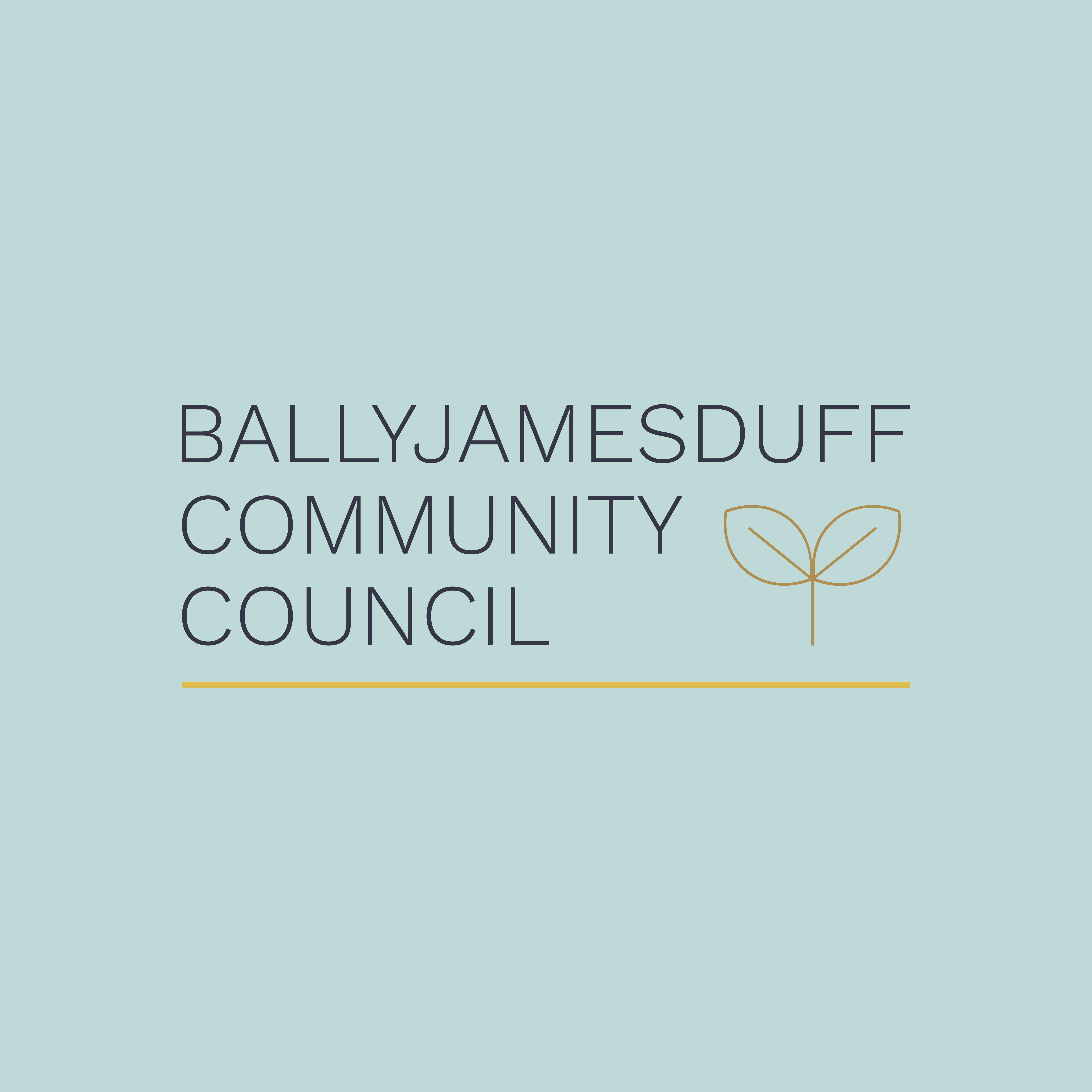 Ballyjamesduff Community Council